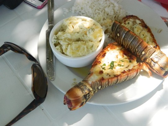 grilled lobstertails