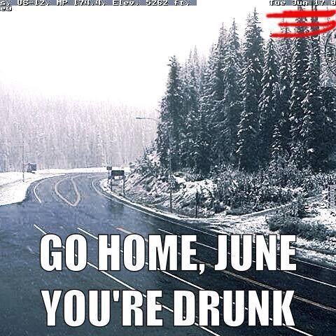 montana weather in june