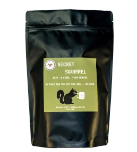 Secret-Squirrel-Java for everyday heroes
