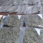 Arrestos por drogas en Caguas y San Lorenzo