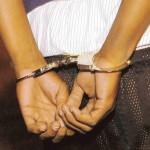 Policia Municipal de Toa Alta arresta Ex Policía trataba de vender un Perro Hurtado