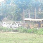 Una niña sale expulsada de una guagua escolar en Manatí