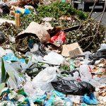 EPA y el Municipio de Río Grande unen esfuerzos para recoger desperdicios domésticos peligrosos