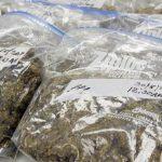 Justicia radica cargos por tráfico drogas contra 14 individuos