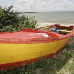 Detiene a 64 indocumentados que intentaban viajar a Puerto Rico