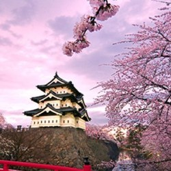 Estude no Japão! Inscreva-se para as bolsas do MEXT 2015
