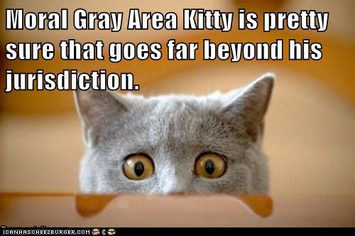 20121119-moral-gray-area-kitty
