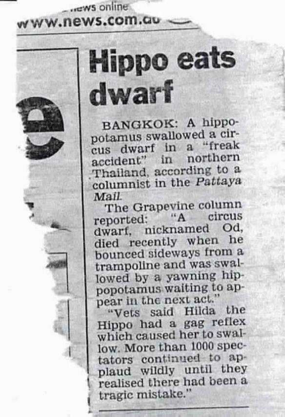 20140904-hippo-eats-dwarf