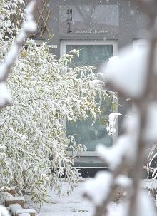 Entrata al dojang sotto una nevicata