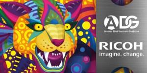 Banner Ricoh Imola Taga Tour