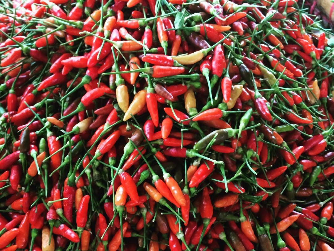 Image of Sili red labuyo