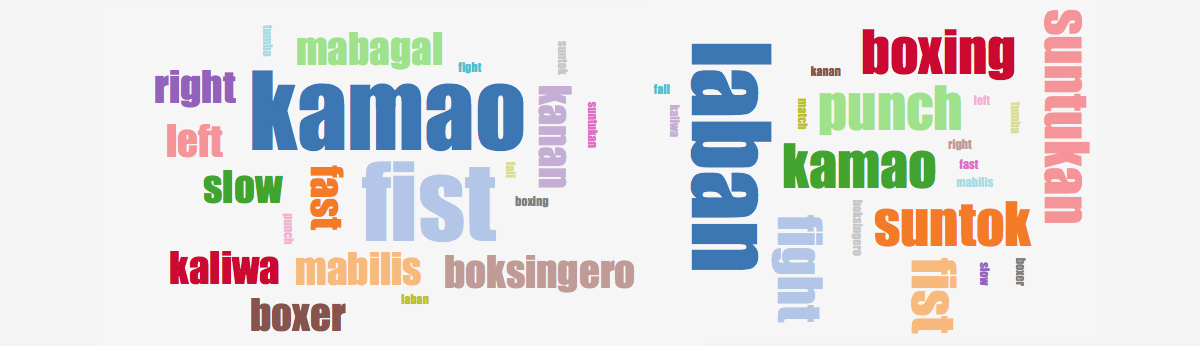 Tagalog Words for Pacquiao-Vargas Fight