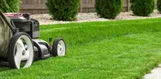 TAG Level - Lawn Mower Reviews