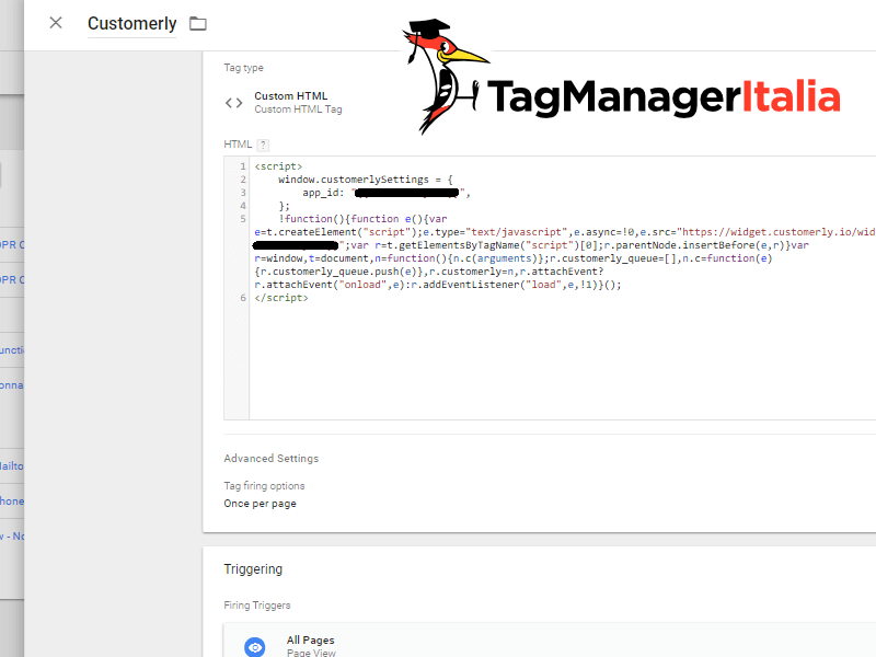install customerly google tag manager