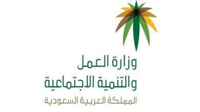 Photo of العمل تُعلن عن فتح باب النقل بين مراكز الرعاية النهارية