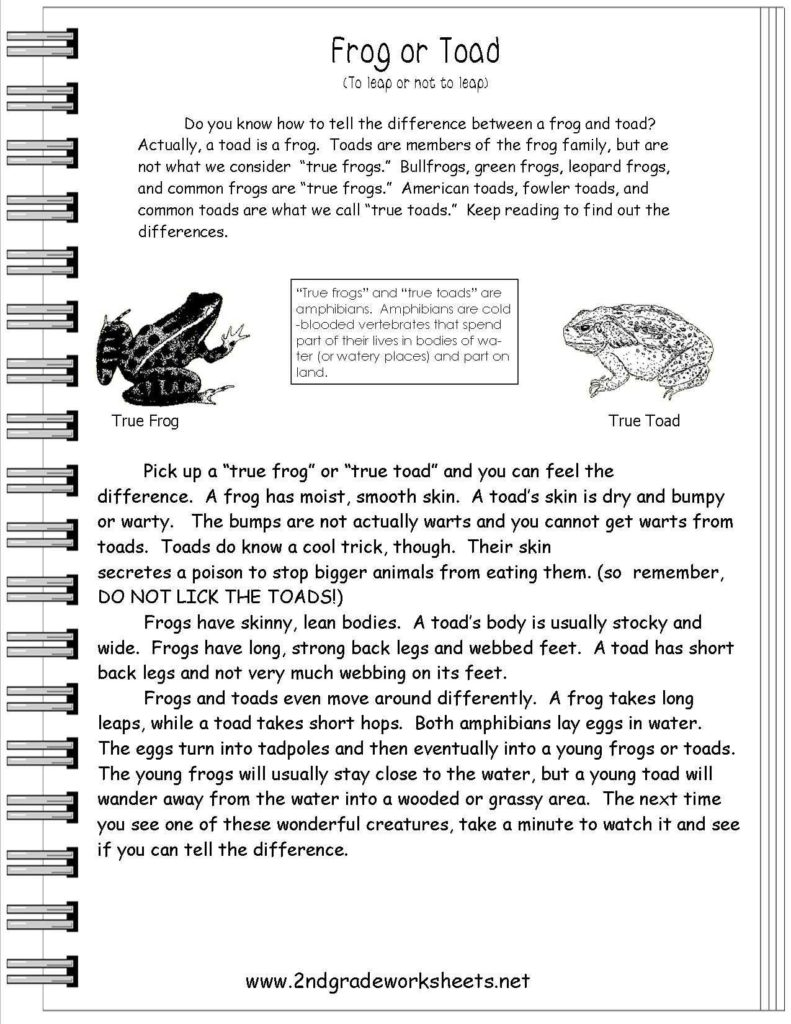 Comprehension Worksheets for Grade 1 Free and Reading Informational Text Worksheets