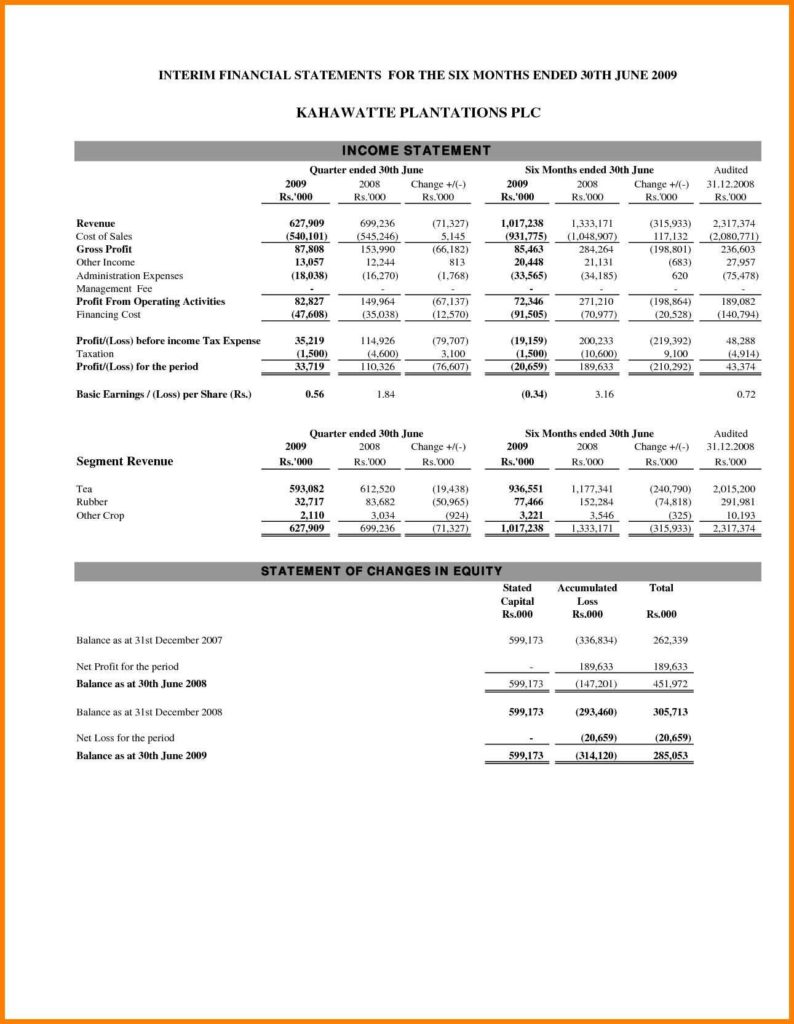 Consolidated Financial Statement Template and Consolidated In E Statement Example Cehaer Spreadsheet