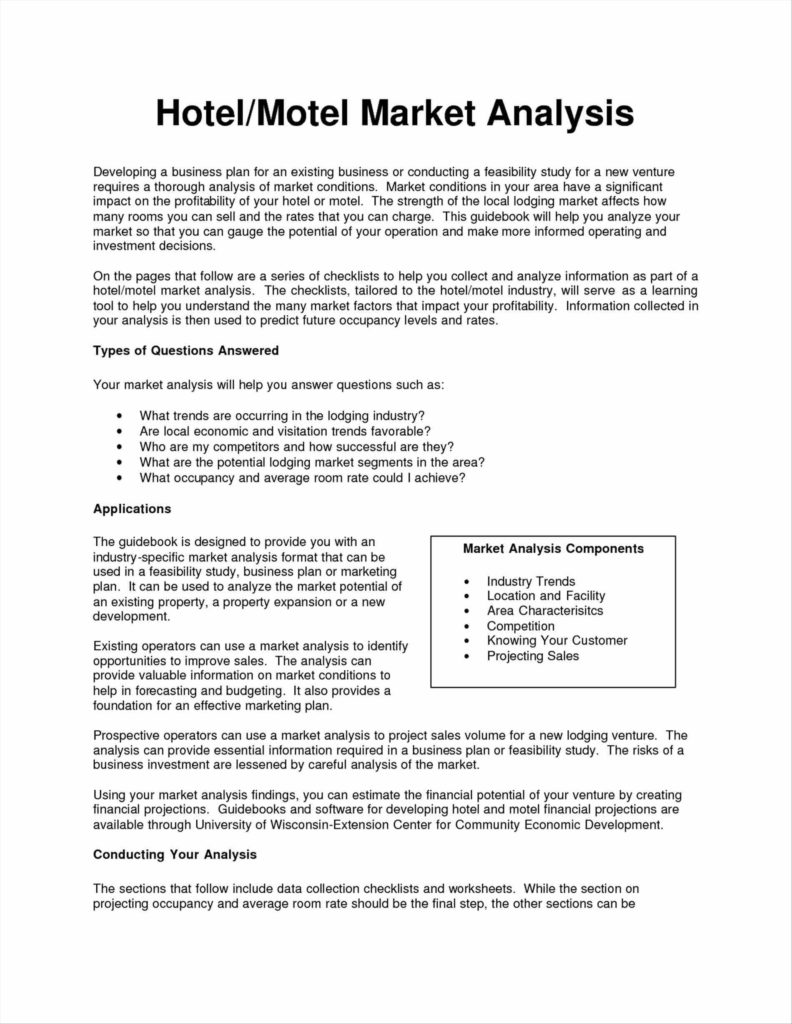 Marketing Report Examples and Plan the Sample Market Analysis Template Essential Guide to