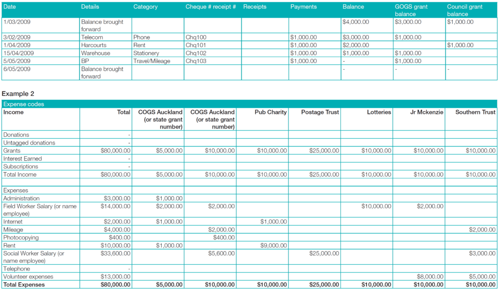Sample Financial Statement for Non Profit organizations and Munitynet Aotearoa  Financial Reporting