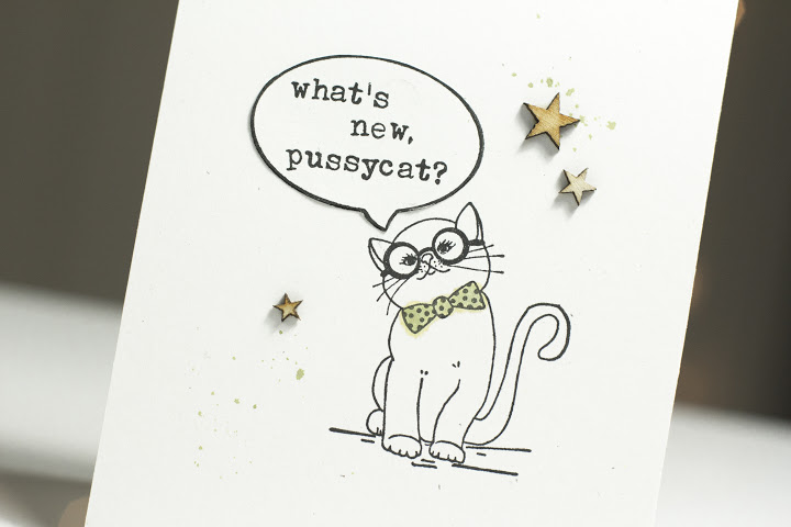 What's New Pussycat? Card Close-Up by Taheerah Atchia