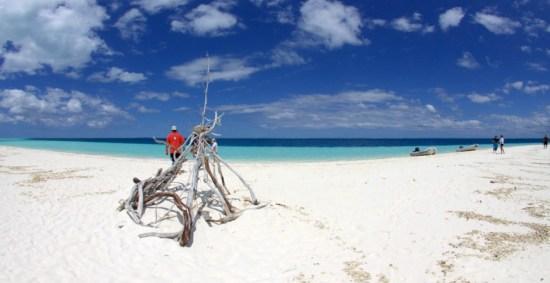 On an amazing island