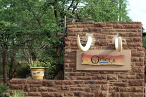 Olifants Camp entrance