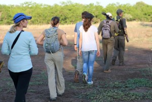 Safari walk