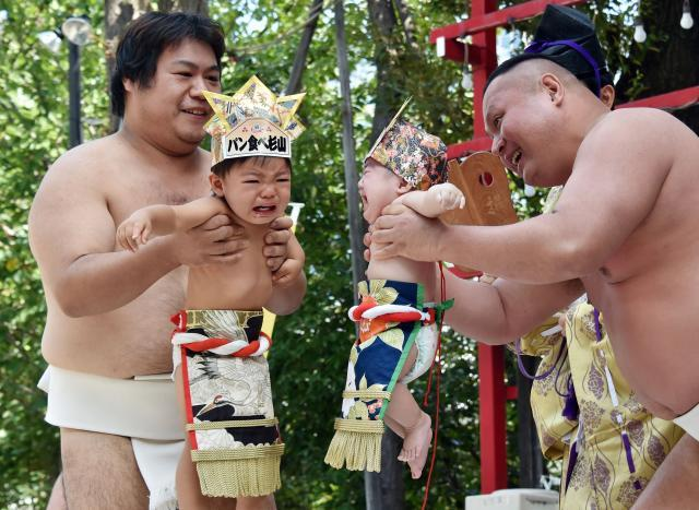 Des bébés en larmes dans les bras de sumo pour attirer les bontés divines