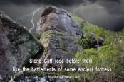 stonecliff copy