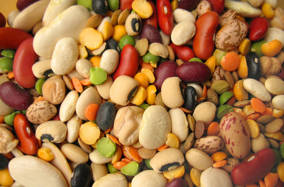 Beans, American Native Food, Native American Food