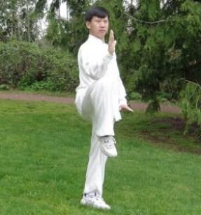 Master_Yang_Jun_Golden_Rooster_Stands_On_One_Leg_(Left)