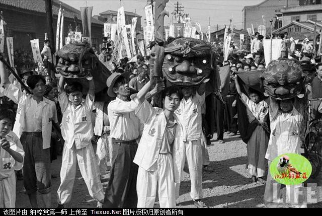 1950 Tańce lwów