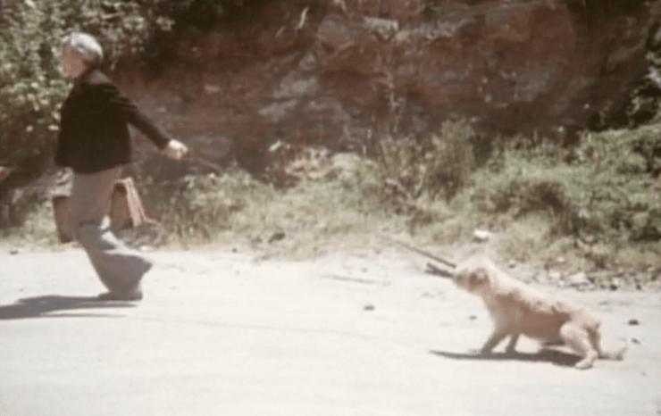 Steve Martin drags his dog in 'The Jerk'