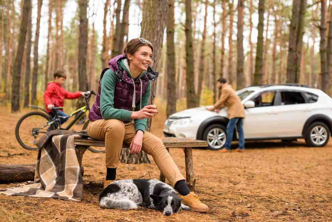 well behaved dog lying at woman's feet while out in the woods