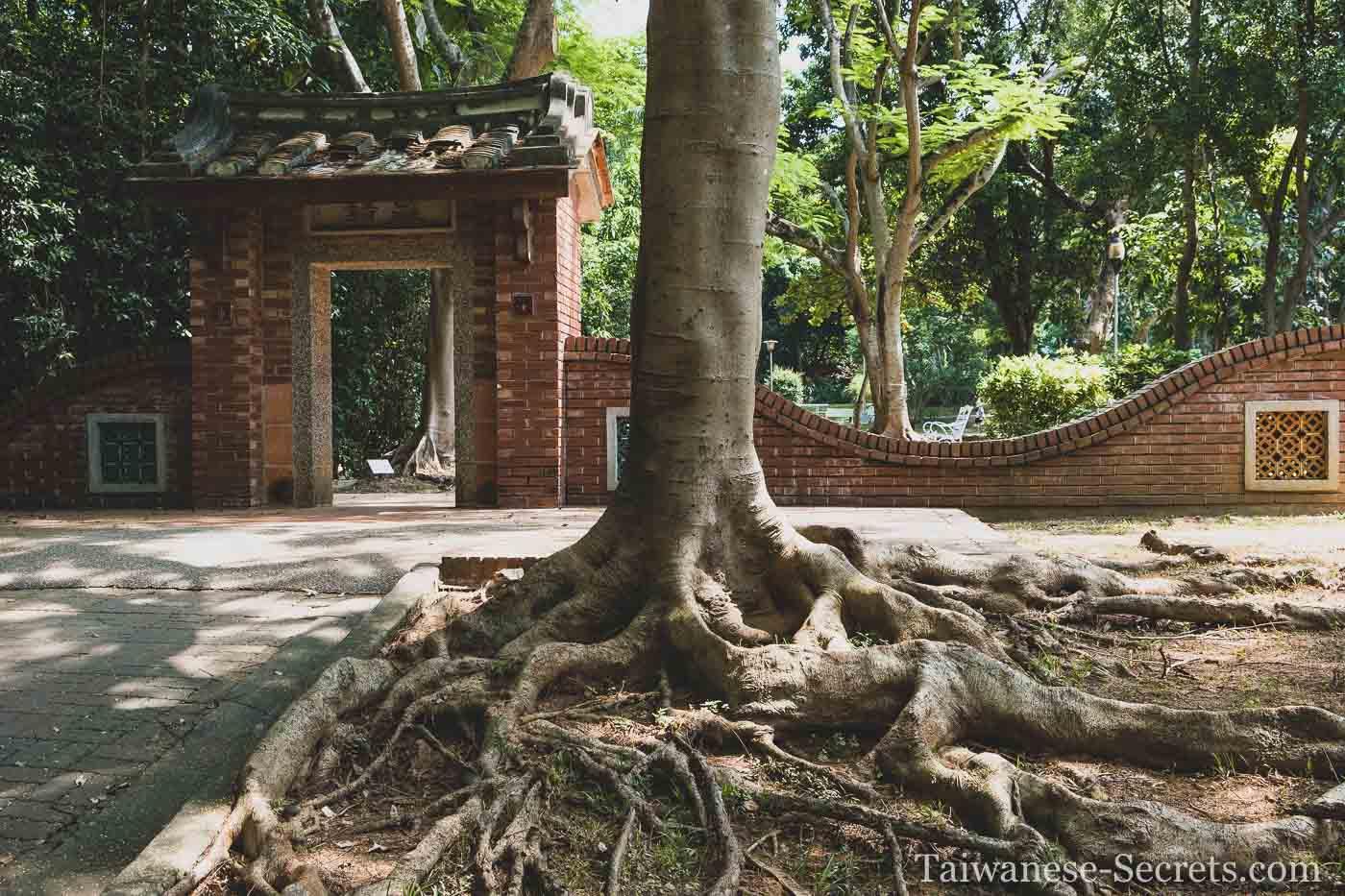walking in chiayi park