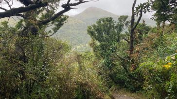 Datunshan hiking trail