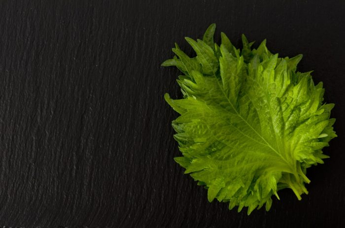 簡単激ウマレシピ『大葉の醤油漬け』と応用の仕方
