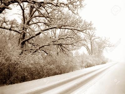 雪のような愛