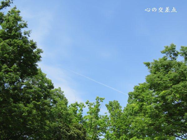 『5月5日の空』