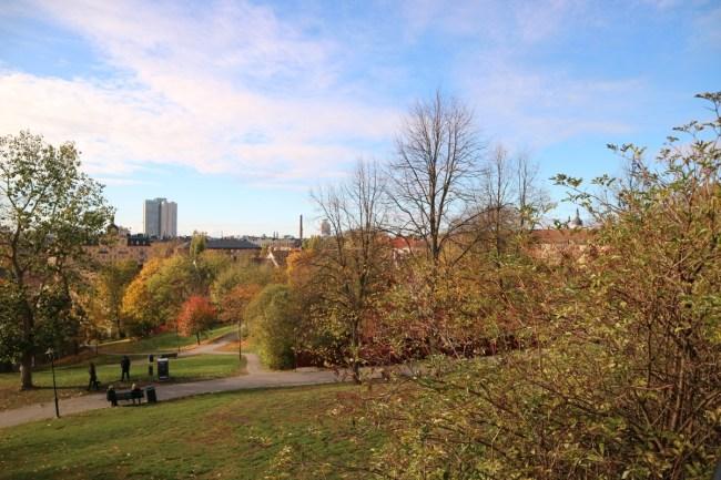 Herfst in Vitabergsparken, Stockholm - stadszicht