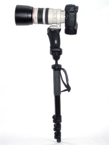A DSLR Camera with a long lens mounted on a mono-pod