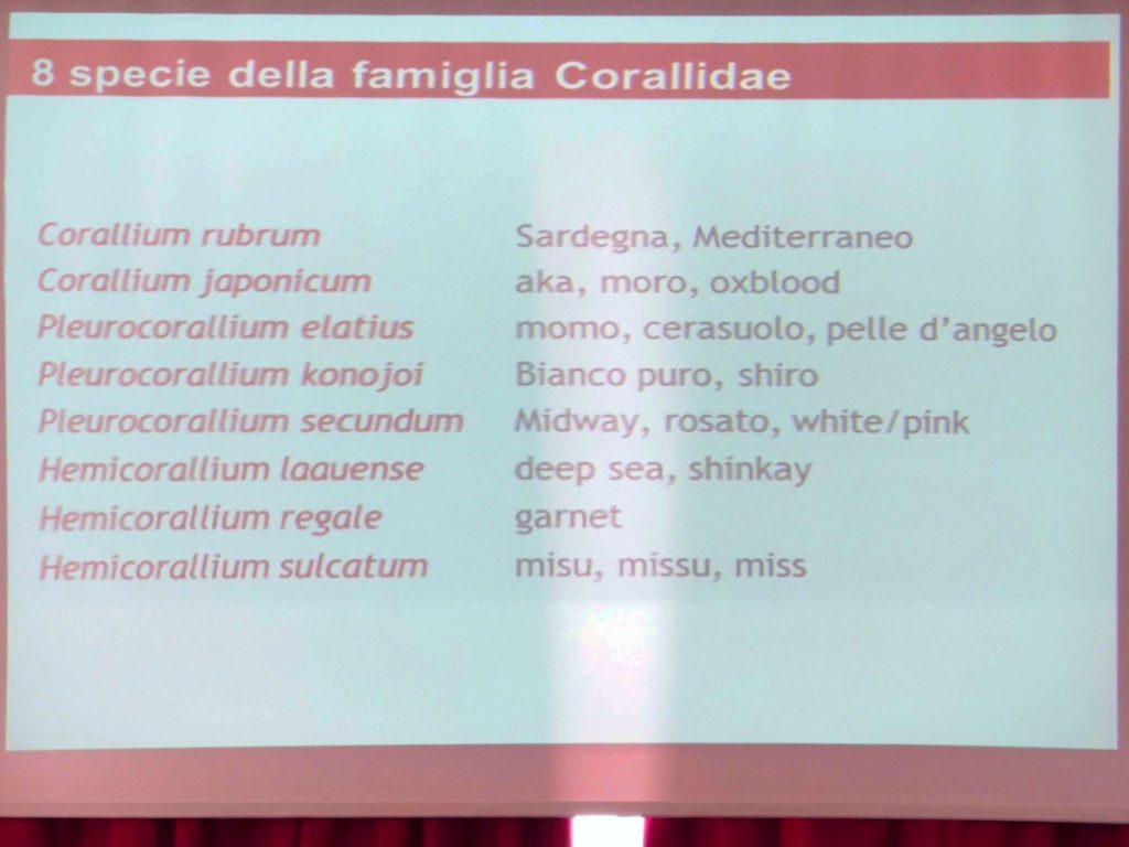 "The 8 species of family corallidae. Second slide of the I.G.I. - Istituto Gemmologico Italiano - entitled ""DNA Proof of the origin of coral"""