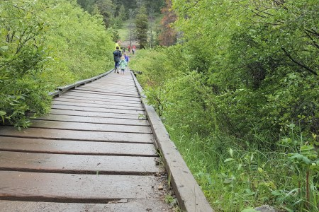 A family walking along wooden boardwalk over a creek at Valley of the 5 lakes in Jasper