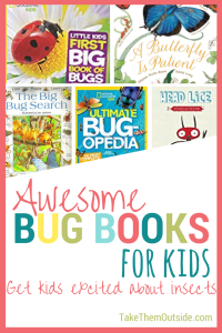 Kids insect picture books with text reading Asesome Bug Books for Kids