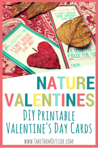 DIY Cards, Valentine's Day Nature Craft for kids to make | #naturecraft #leafcraft #valentinesday #valentinescraft