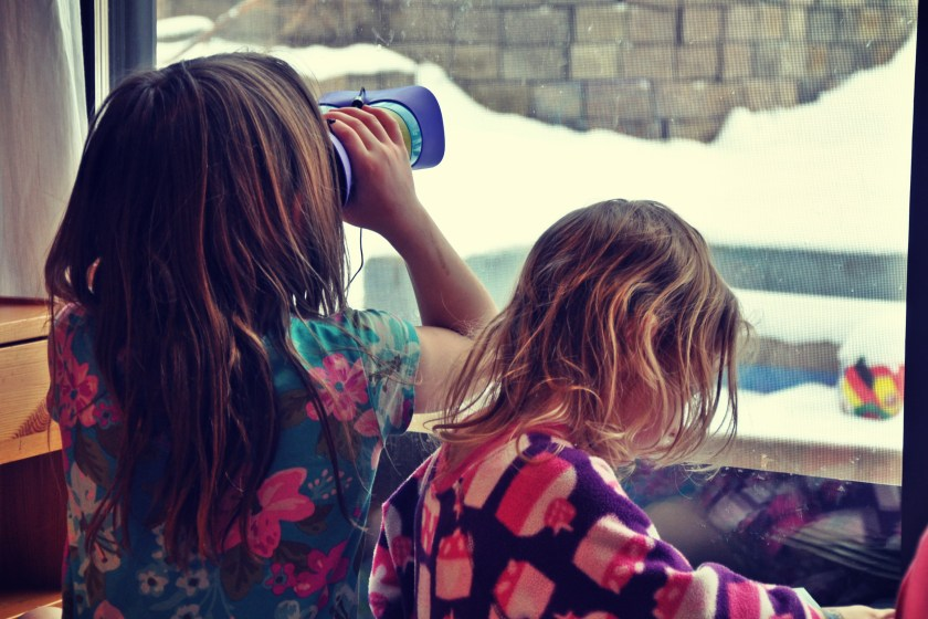 Learn how to get kids excited and interested in nature with indoor birdwatching