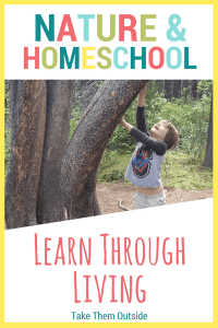Boy reaching up the trunk of a curved tree in a wooded area, text reads nature and homeschool, learn through living