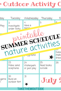 Close up image of a summer month activity planner, text reads printable summer schedule nature activities