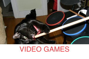 video-games-cat_300x200_stripe