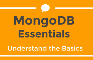 MongoDB Essentials - Understand the Basics of MongoDB